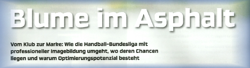Download Artikel Handball-Magazin